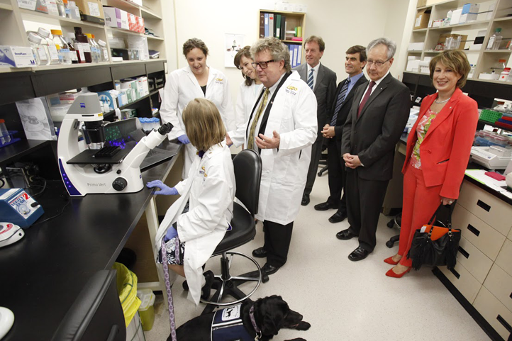 Researchers at CHEO