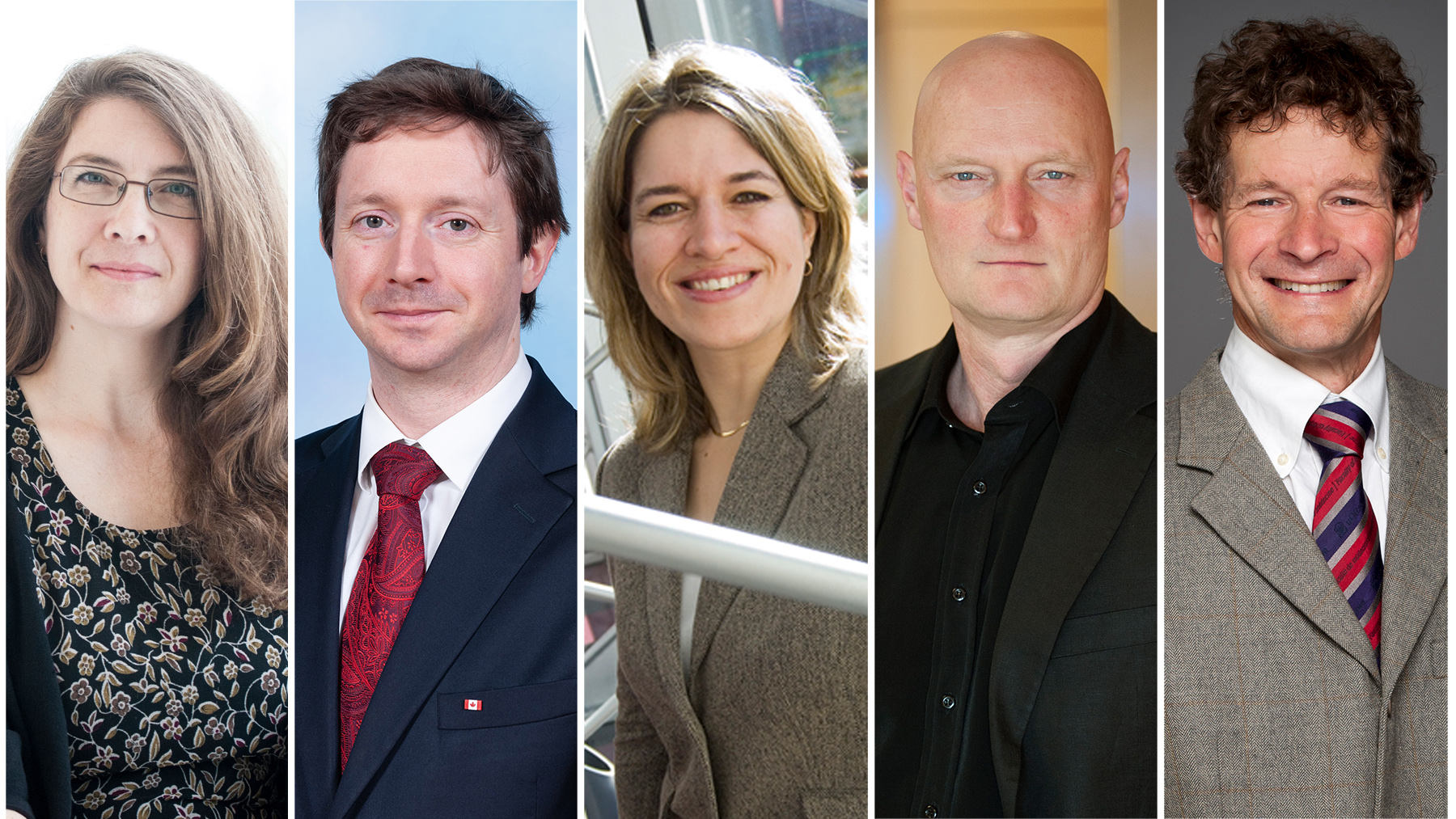 Professors Ivy Lynn Bourgeault, Paul Daly, Karin Hinzer, Michael Williams and Julian Little